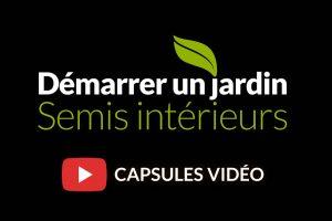 Capsules vidéo sur les semis intérieurs